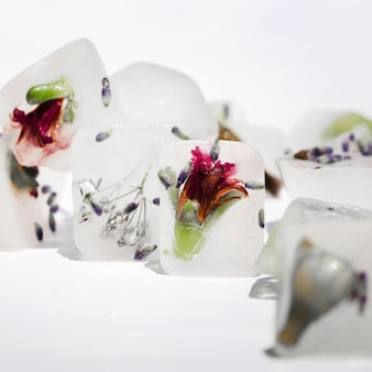 Red flowers and violet seeds in ice blocks