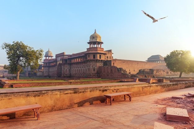 Red fort of agra courtyard, sunrise view, india.