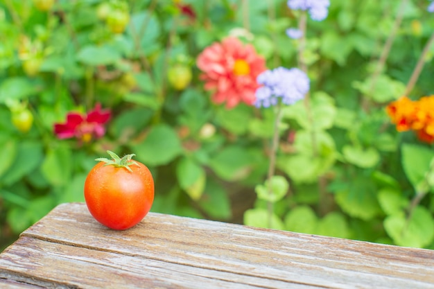 Red fresh tomato on a wooden stool against the background flowers harvesting healthy food concept
