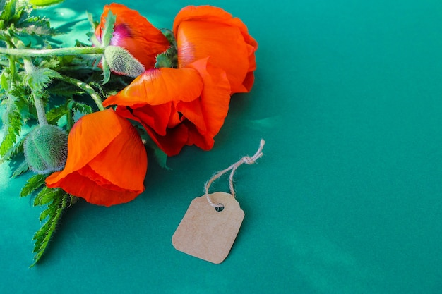 Red garden poppies and a paper tag on green background