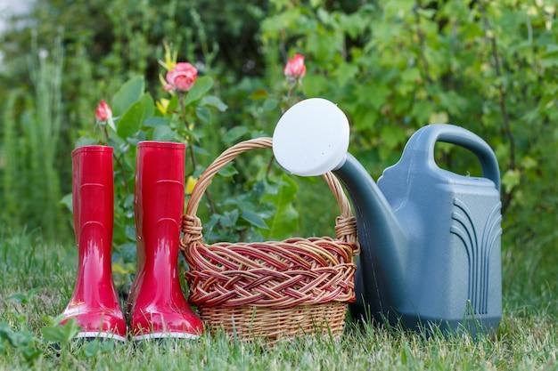 Красные садовые резиновые сапоги, плетеная корзина и пластиковая лейка на зеленой траве и размытый фон с розовым кустом