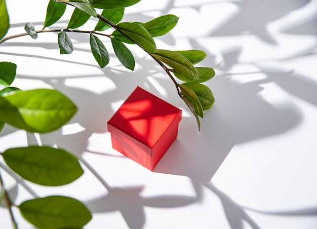 Red gift box on white table under spring flowers with morning shadow. top view and copy space