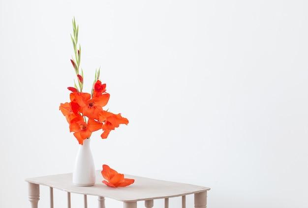 白い背景の上に花瓶の赤いグラジオラス