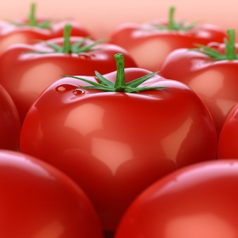 赤い光沢のあるトマト