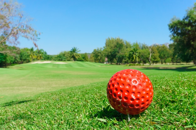 Red golf ball on green field