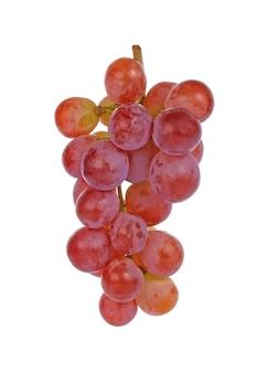 白地に赤ブドウ