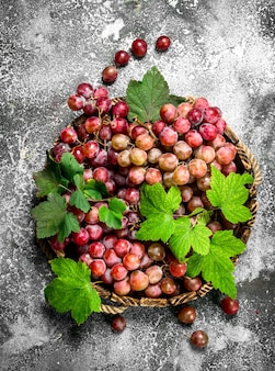 Red grapes on wooden tray on rustic table.