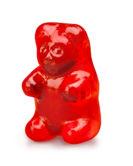 빨간 거미 곰