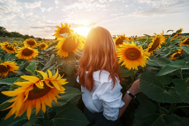A red-haired girl in a field of sunflowers looks at the sunset.