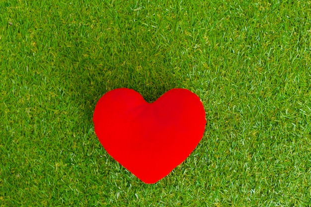 Red heart in the grass