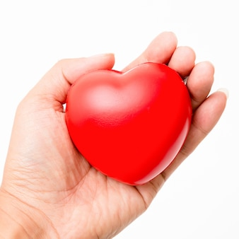 Red heart in the hand. isolated on white background. studio lighting.