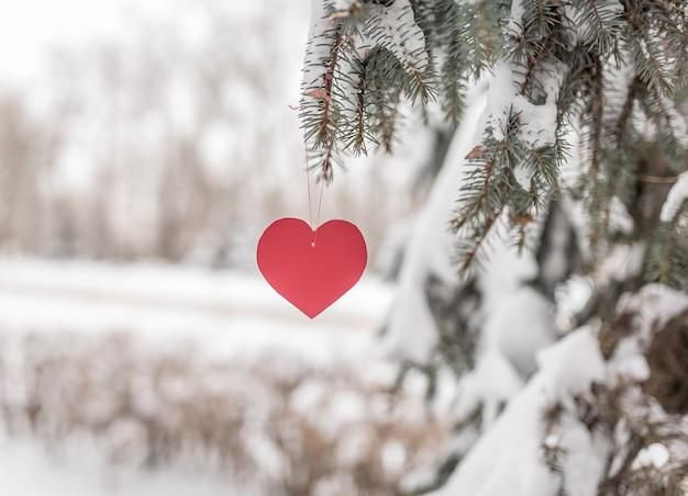 Красное сердце висит в зимнем лесу на еловой ветке. романтическая любовь и день святого валентина
