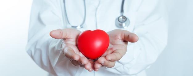 Красное сердце в руке женщины доктора. символ кардиологии. концепция лечения и здравоохранения.
