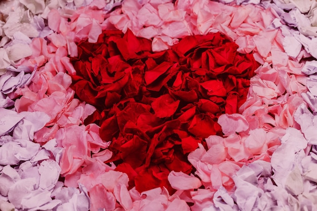 Red heart made of petals