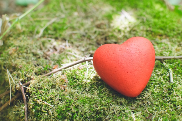Red heart on moss in the forest