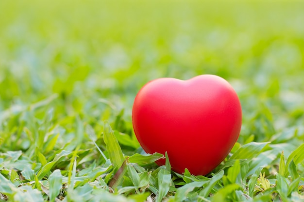 Red heart placed on green grass