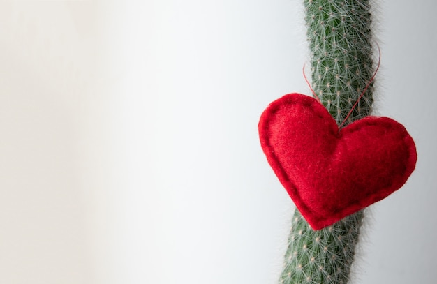 Red heart shape in a green cactus and bokeh