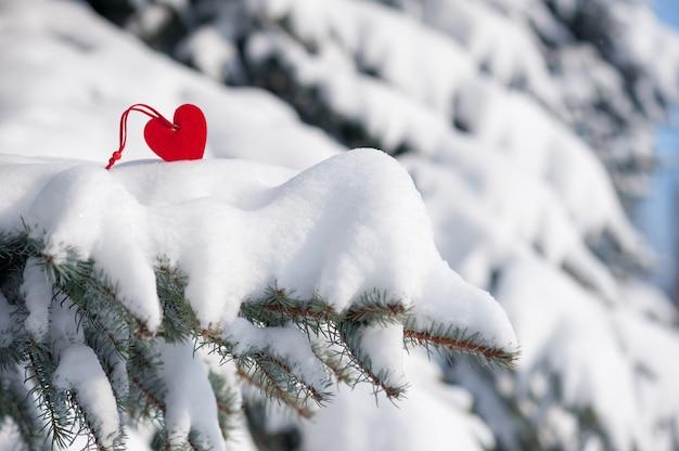 Красное сердечко в снегу на елке