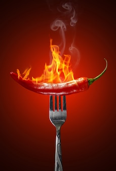 Red hot chili pepper isolated