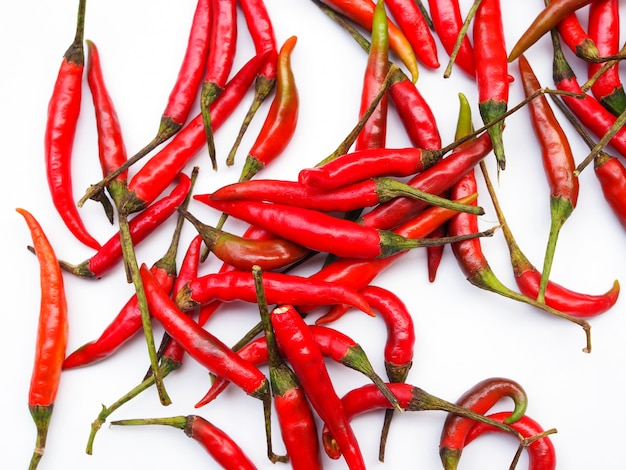 Red hot chili pepper isolated.
