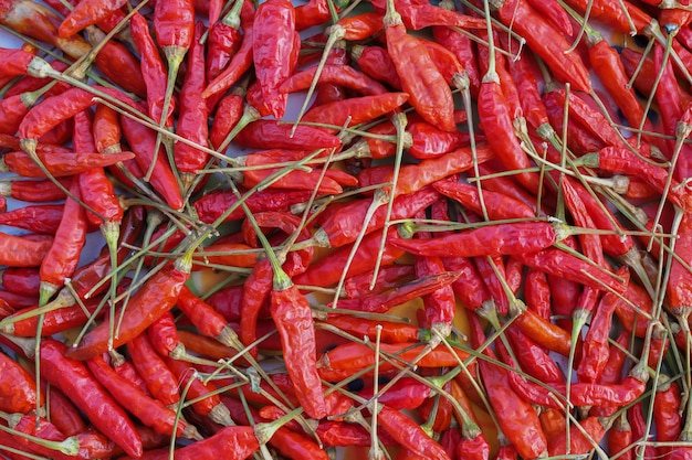 Red hot dried chilli nature texture background