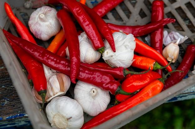 상자에 빨간 고추와 마늘입니다. 평면도. 짭짤한 향신료, 비타민 및 건강 식품. 확대.