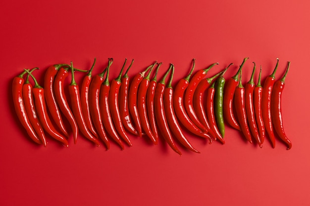 Red hot spicy chilli pepper arranged vertically over vivid background. harvested fresh vegetables from market or garden. design banner with copy space. flat lay view. food and nutrition concept.