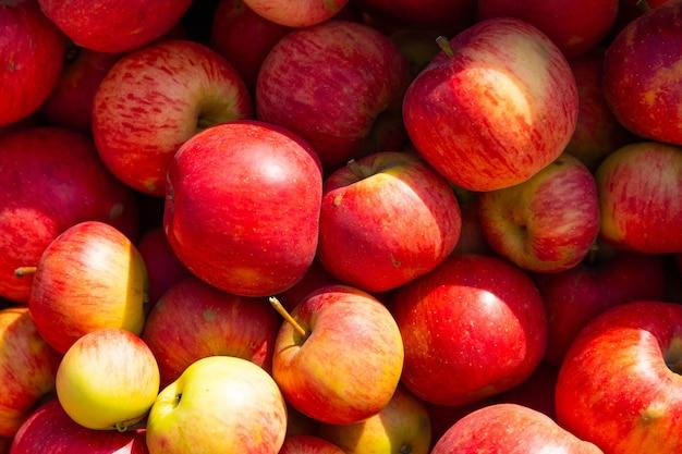 赤いジューシーなリンゴの背景