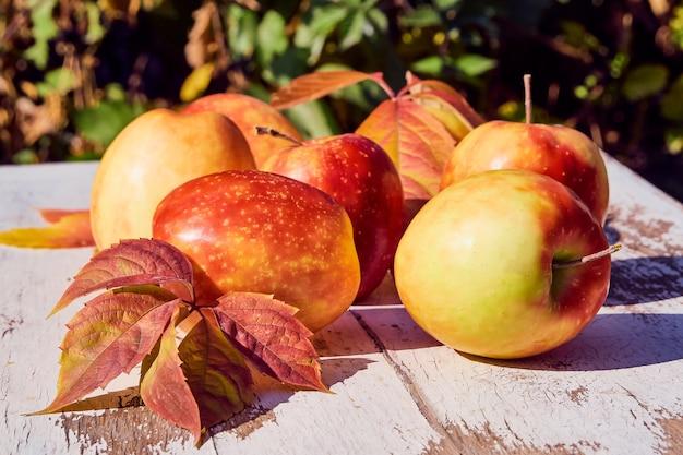 秋の自然を背景に古い木製のテーブルに赤いジューシーな熟したリンゴ