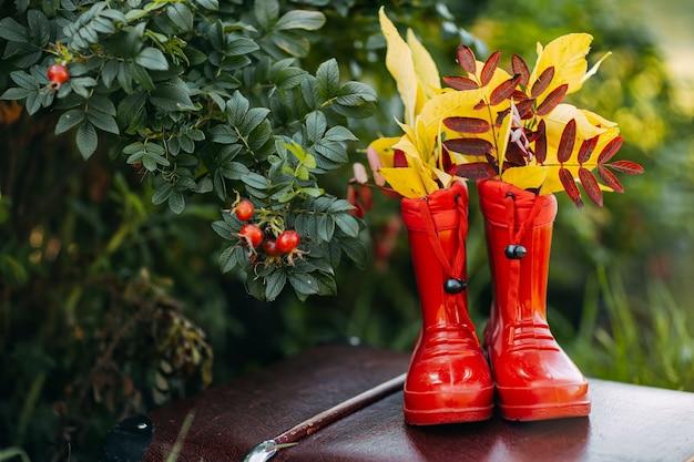 中に黄色の葉が付いている赤い子供長靴はヴィンテージスーツケースにとどまる
