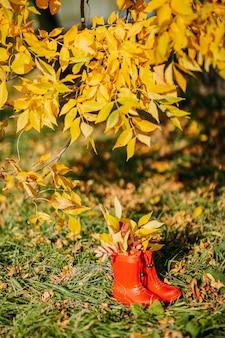 中に黄色の葉が付いている赤い子供長靴