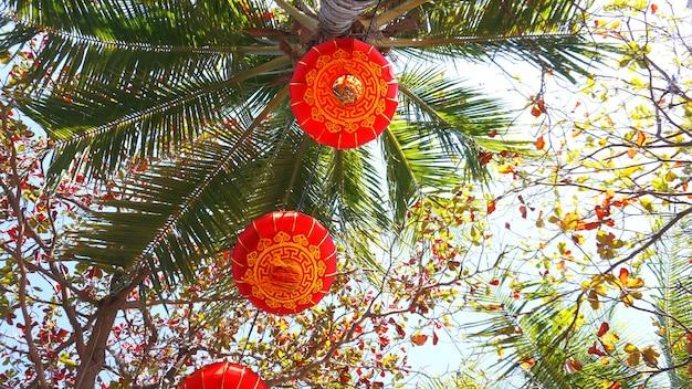 Красные фонари на праздновании китайского нового года на гавайях с кокосовыми пальмами