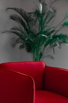 Красный кожаный диван возле зеленого растения
