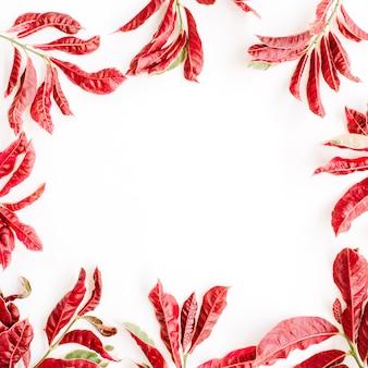 흰색 바탕에 붉은 잎 프레임.