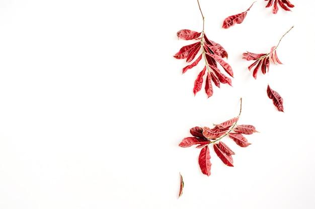 흰색 바탕에 붉은 단풍.