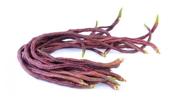 白い背景の上の長い赤豆