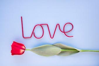 Red love writing near cute tulip