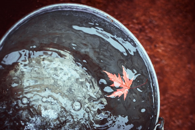 A red maple leaf floats in a tin bucket on the surface of the water with falling raindrops