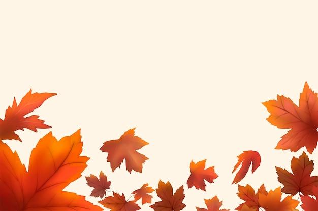 Red maple leaf framed background