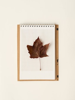 Red maple leaf on an open page notebook.