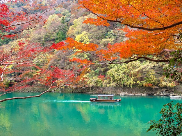 Red maple leaf through katsura river at arashiyama, kyoto.