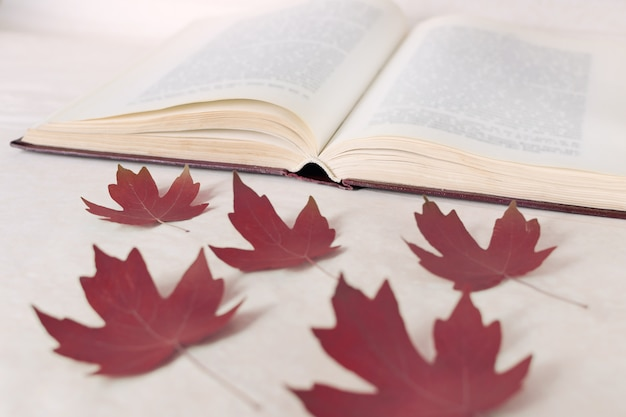 Red maple leaves lie in front of an open book.