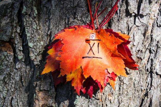11번 나무에 고정된 붉은 단풍잎
