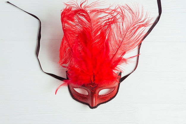 Red mask with feathers