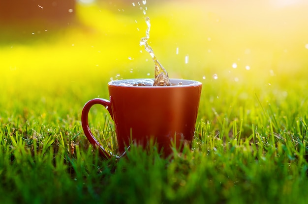 Red mug of coffee on grass in park