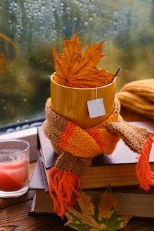 Красная кружка с платком и засохшим листом на фоне окна после дождя. согревающие осенние напитки. макет для чайного дизайна