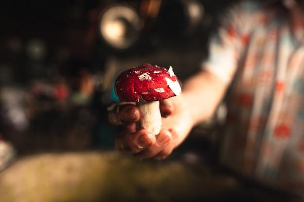 自宅で手に赤いキノコ
