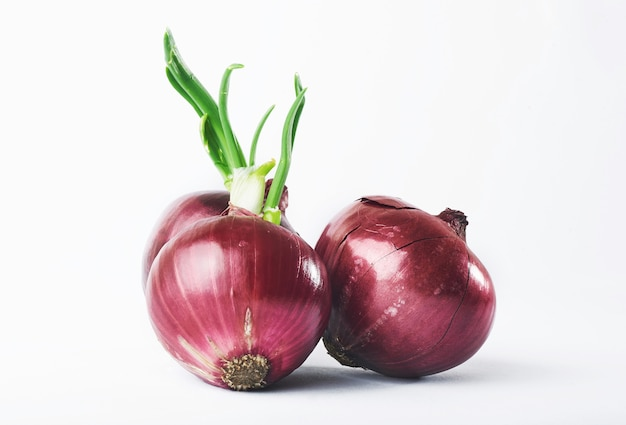Red onion whole, isolated on white