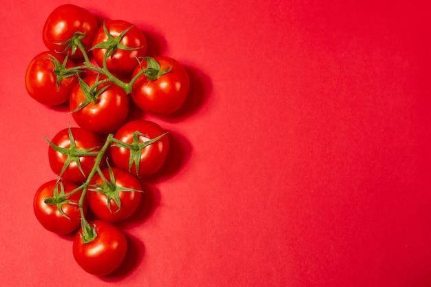 赤い背景の上の緑の枝に赤い有機トマト