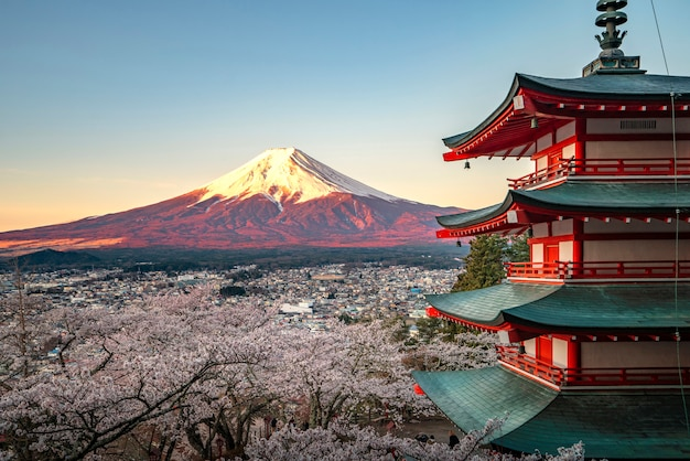 Red pagoda and red fuji in morning time Premium Photo
